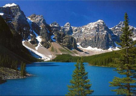 小溪环绕的风景图片