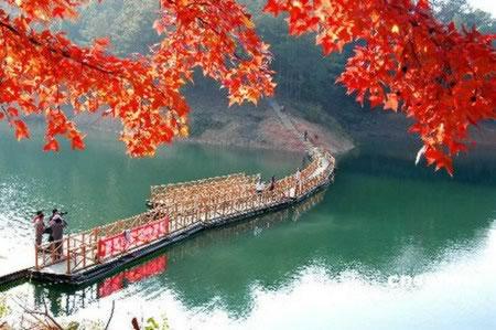 大余绿肺之称的大余丫山风景区;2,游玩aaaa级上犹陡水湖风景区,品陡水